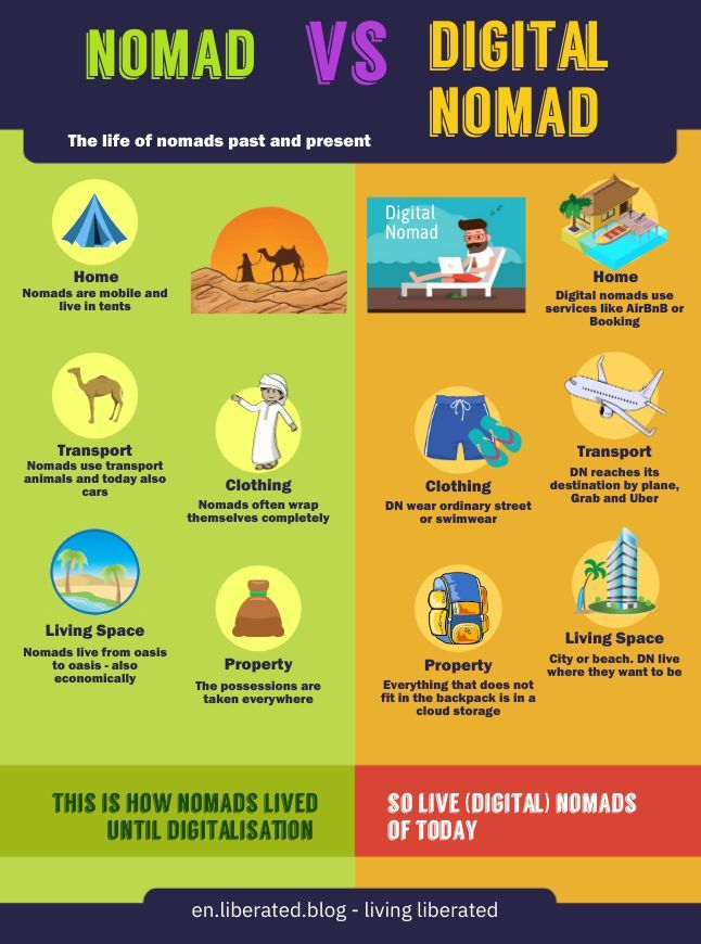 Digital Nomads Past and Present Infographic Comparison